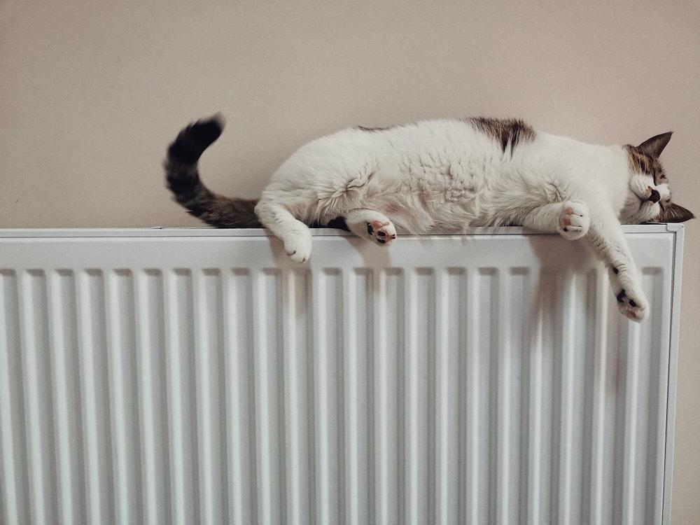 boiler capacity
